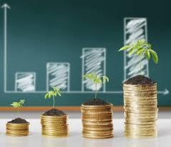 pile de piece et croissance de capital